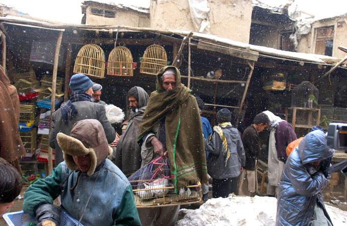 afganistan alegeri prezidentiale iarna