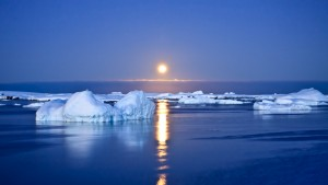 arctica calota glaciara record minim