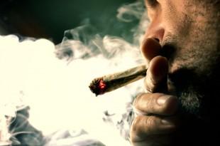 Secretarul de stat pentru relația cu Parlamentul din Franța susține că prohibiția consumului de cannabis a eșuat în condițiile în care tinerii francezi consumă această substanță mai mult decât cei din alte 41 de state dezvoltate