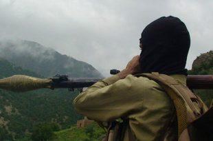 afganistan ofensiva primavara talibani