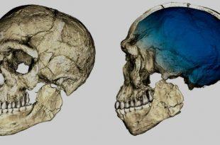 arheologie umanitate leaganul civilizatiei maroc ramasite umane vechime
