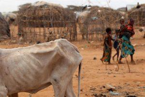 etiopia criza alimentara seceta